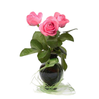 3-rosas-rosas-con-jarrón