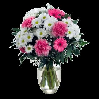 Flores para Cádiz