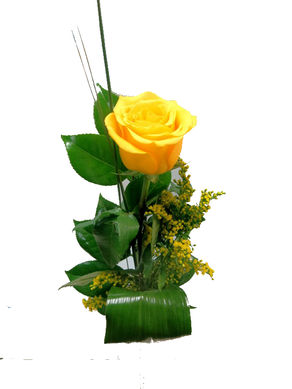 Elegancia amarilla