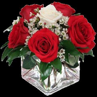 centro de rosas rojas y 1 blanca