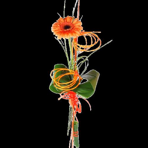 Gerbera naranja
